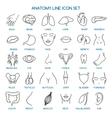 Anatomy line icons vector image