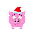 a pig new year icon in color vector image vector image