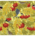 autumn branch of rowan and bird vector image vector image