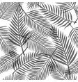 black and white tropical leaves background vector image vector image