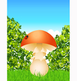 Mushroom in the forest vector image vector image