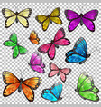 set different butterfly on transparent vector image