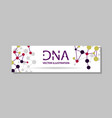 genetics testing science dna double spiral vector image