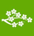 sakura icon green vector image vector image