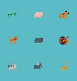 set of zoo icons flat style symbols with horse vector image vector image