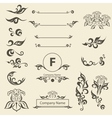 Set Vintage Decorations Elements arabesque vector image