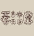 set vintage nautical designs with a shark vector image vector image