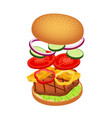 3d hamburger with ingredients fast food vector image vector image