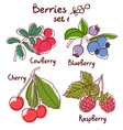 Berries set 1 vector image