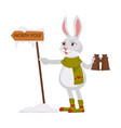 bunny in knitted scarf and socks looks for north vector image