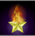 burning star with fire flame vector image vector image
