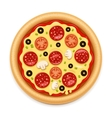 detailed hot pizza with sticky cheese and vector image