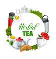 flower and herbal tea round frame vector image vector image