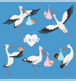 flying stork baby bird delivery newborn cute vector image