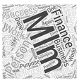 Personal Finance MLM Word Cloud Concept vector image vector image