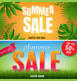summer sale banners with tropical frame and grass vector image vector image