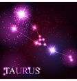 taurus zodiac sign of the beautiful bright stars vector image vector image