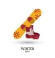 Winter Sport design vector image vector image