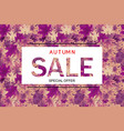 abstract autumn sale vector image vector image