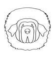 isolated tibetan mastiff vector image vector image