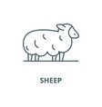 sheep line icon linear concept outline vector image