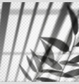 vertical blinds or louvers reflection with branch vector image vector image