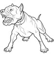 barking dog vector image