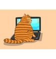 Cat works on the laptop vector image