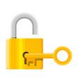 metal padlock with key pad lock with keyring vector image vector image