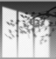 plant branch or leaf shadow on transparent wall vector image vector image