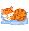 Cute cat cartoon sleeping on a pillow vector image vector image