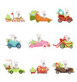 cute little bunnies driving vintage car with vector image
