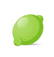 fresh juicy lime icon tasty ripe fruit isolated on vector image
