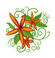 Orange flowers with green leaves vector image