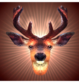 Polygonal Deer vector image