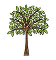 scribble tree cartoon vector image vector image