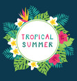 summer time tropic background vector image vector image