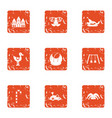 toddler match icons set grunge style vector image