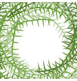 algae frame leading grass background place for vector image