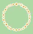 chamomile pattern on green background daisy chain vector image vector image