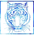 head of tiger is in a watercolor artwork in a blue vector image vector image