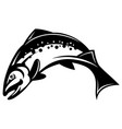 monochrome with salmon vector image