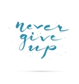 Never give up Hand lettered calligraphic design vector image