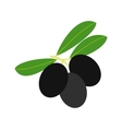 Olives on branch with leaves icon flat style vector image