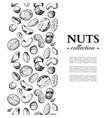 nuts vintage frame hand drawn vector image