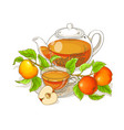 apple tea vector image