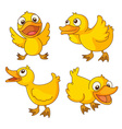 Chicks vector image vector image