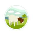 farming today boer goat on a green meadow vector image vector image