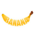 fresh banana lettering vector image vector image