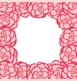 pink begonia flower picotee first love border vector image